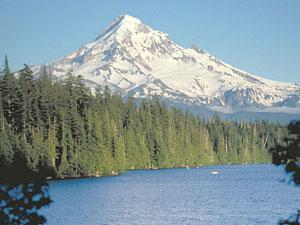 Lost Lake is lined by tall pine trees with a snowy mountain in the background
