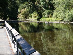 a fishing pier extends into the Nehalem River