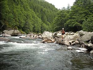 A person fishes for steelhead from the shore of the Siletz River