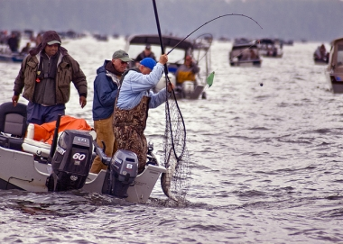 Anglers landing Columbia River spring Chinook
