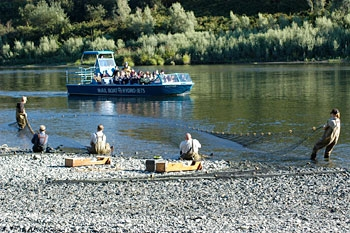 A photo of 5 people pulling a seine net in the Rogue River