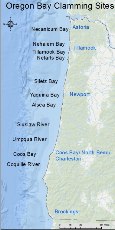 An image of the Oregon coast with bay clamming sites labeled