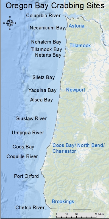 An image of the Oregon coast showing locations to go bay crabbing