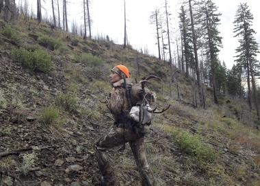 Packing a blacktail