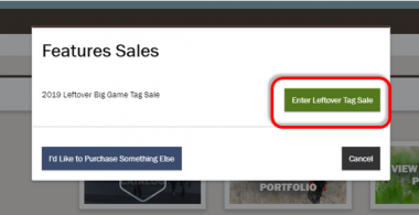 screen shot of Leftover tags Features Sales w red box