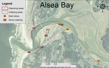 Alsea Oregon Map.Where To Crab Clam In Alsea Bay Oregon Department Of Fish Wildlife