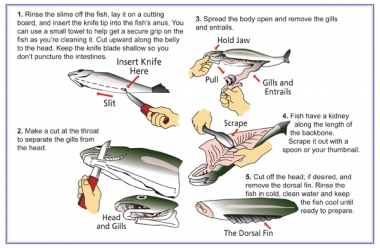 step by step instructions on how to clean a fish