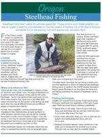 a small image of the steelhead fishing flyer produced by ODFW