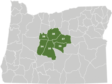 A map of Oregon with the Central Area colored in green