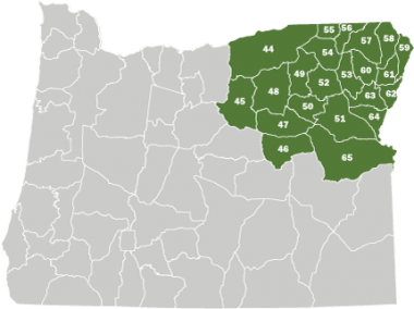 A map of Oregon with the Northeast Area shaded in green