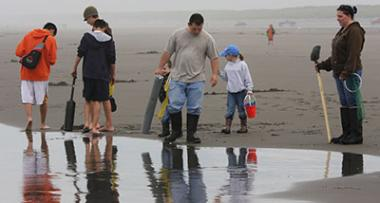 What appears to be two families stand close to each other on a wet beach looking for clams