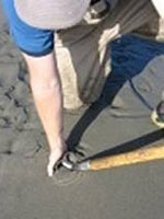 a man pushes his hand into the sand next to a shovel blade that is already inserted into the sand.