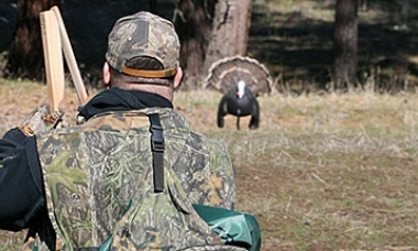 the back of a man who is looking ahead at a turkey decoy