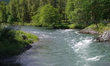 The middle fork of the Willamette River has outstanding fishing opportunities for boat and bank anglers.