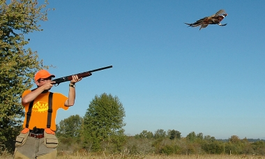 a hunter points a shotgun at a flying pheasant