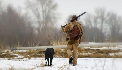 a bird hunter and their dog walk through a snowy agricultural field