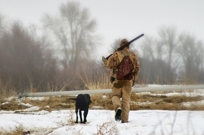 image of a winter duck hunter and dog i