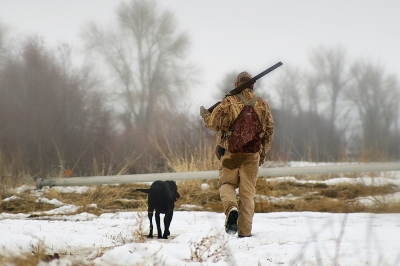 image of a duck hunter and dog in snowy field